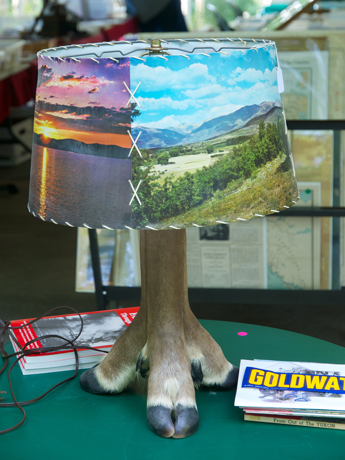 You Could Own This Lamp!