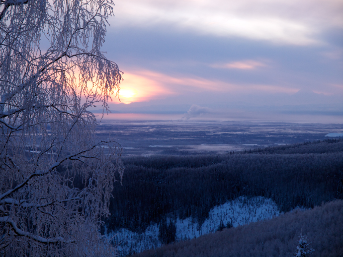 Tanana Valley from Gilmore Trail