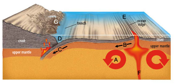 Plate Tectonics in a Nutshell