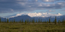Mt. Wrangell, 14,163 Feet, an Active Shield Volcano
