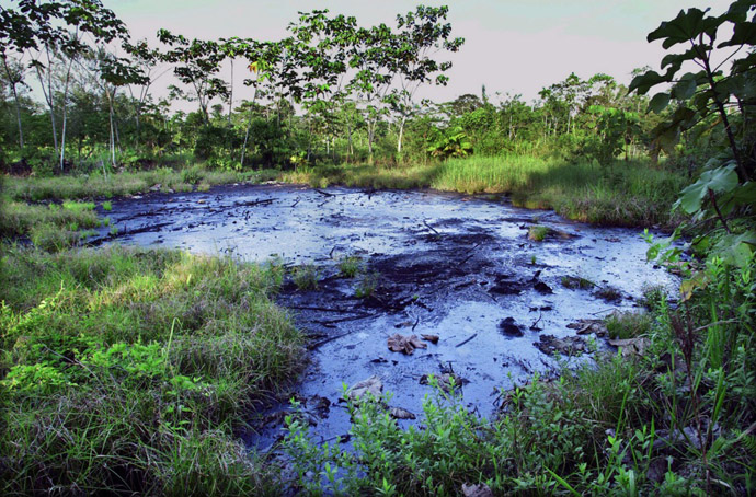 A waste pit filled with crude oil in a jungle clearing near the Amazonian town of Sacha, Ecuador. (Photo: Lou Dematteis/Redux)