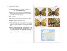 Sample Pages from Field Guide to Alaska Butterflies
