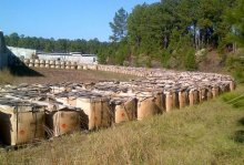 A photograph released in 2012 showed thousands of tons of M6 propellant, which is used in the firing of artillery rounds, stuffed into plastic bags and piled into sagging cardboard boxes at Camp Minden in Louisiana. Disposal of the propellant, which was owned by a private contractor that declared bankruptcy in 2013, has been problematic. Credit Louisiana State Police