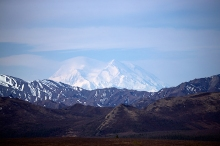 Denali looms over the foothills, from the crest between the Sanctuary and Teklanika Rivers
