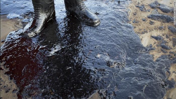 Wading through crude oil, Santa Barbara Channel, May 2015