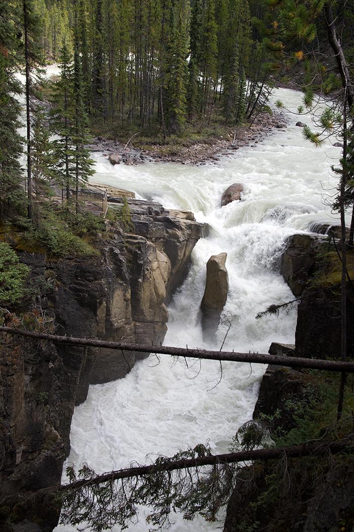 Sunwapta River, just entering Upper Sunwapta Falls