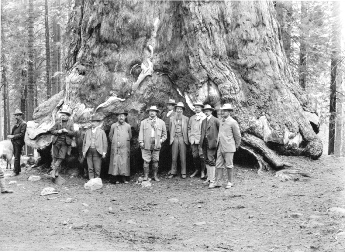 John Muir (fourth from right) with President Theodore Roosevelt (sixth from right) in Yosemite.