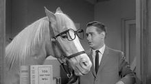 Alan Young: Cast in a Role That Was Dumber Than a Horse