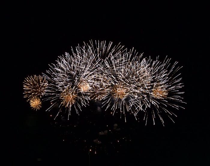 Fireworks, Ann Morrison Park, Boise