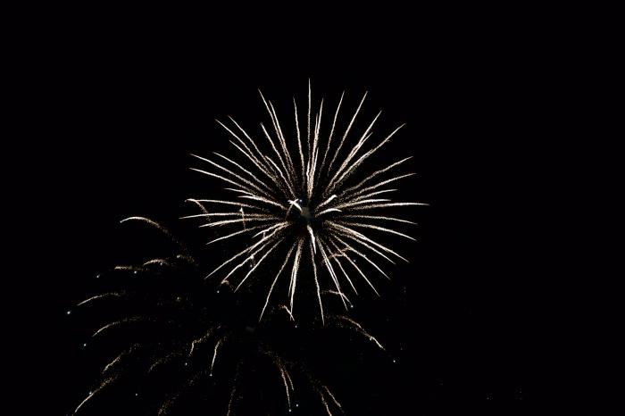 Fireworks, Ann Morrison Park, Boise, July 4, 2016