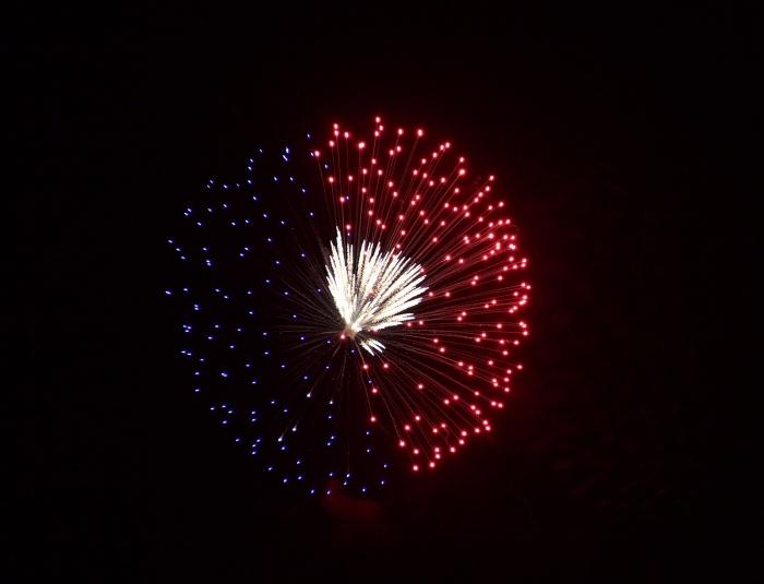 4th of July Fireworks Display, Ann Morrison Park, Boise