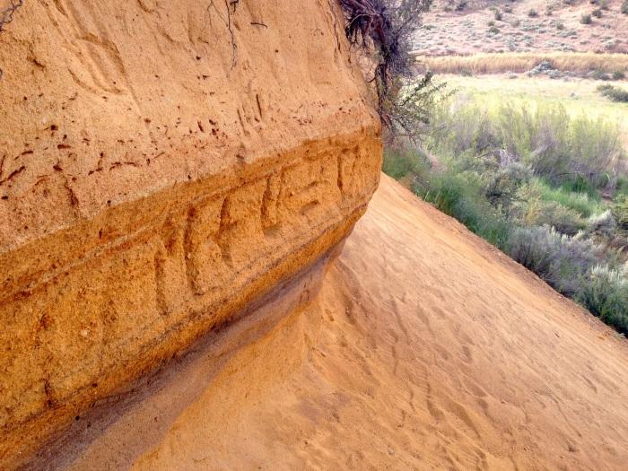 Fluvial sand deposits, Hull's Gulch, Boise, Idaho