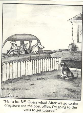 "© 1982 Gary Larson, ""The Far Side,"" United Press Syndicate"