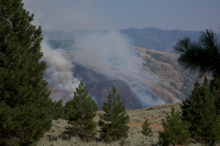 Another View of Mile Marker 73 Fire, Central Idaho