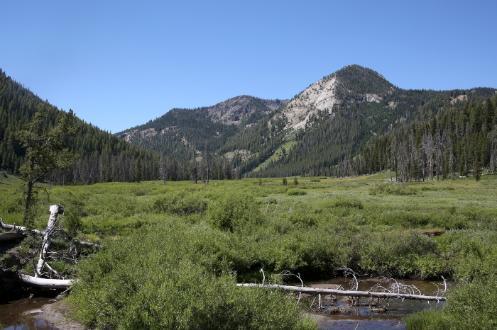 Headwaters of the Salmon River, Below Galena Summit