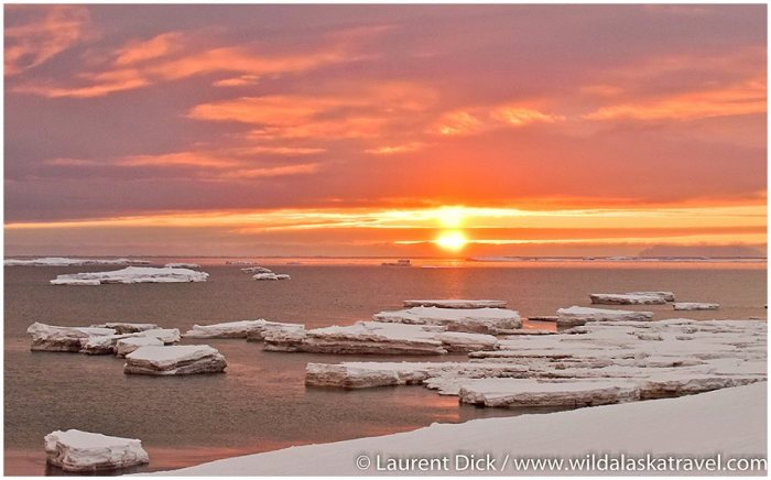 Nome Sunset; Open Water in Norton Sound in Mid-March; photo © Laurent Dick 2019