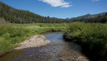 Salmon-free prime spawning habitat, headwaters of the Salmon River, Sawtooth National Recreation Area, Idaho