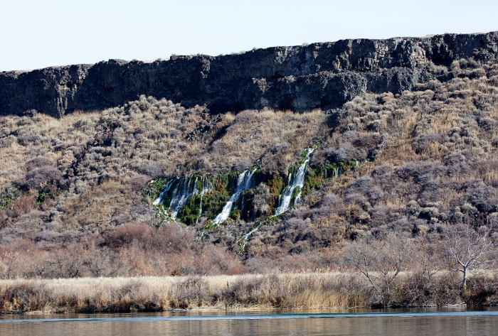 A few of the Thousand Springs along the north Snake River Canyon wall