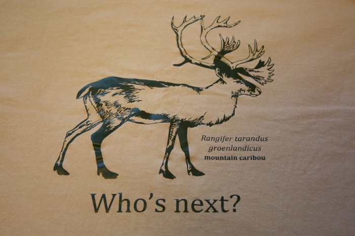Idaho Conservation League's Mountain Caribou T-Shirt, asking the question