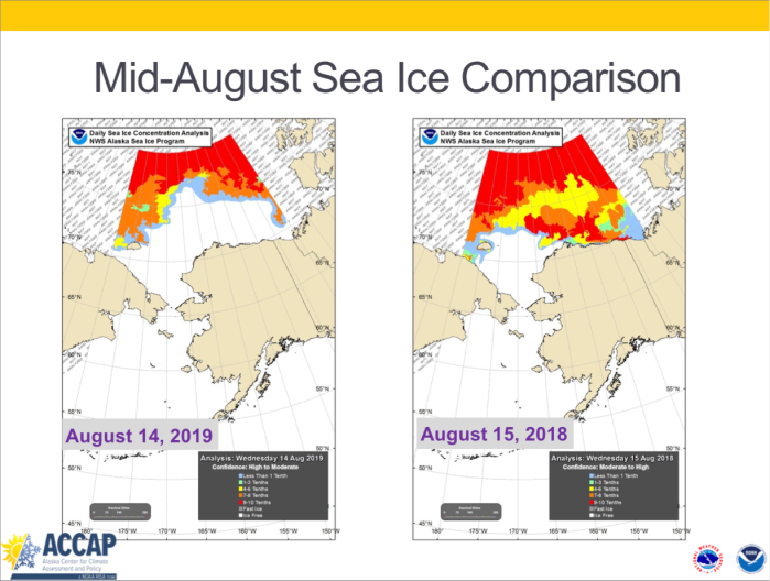 Sea Ice cover, August 2018 and August 2019, via AACAP
